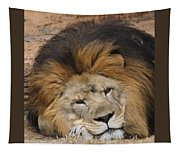 Male African Lion Tapestry