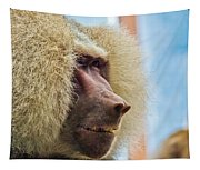 Male Baboon Tapestry
