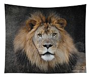 Male Lion Portrait Tapestry