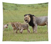 Male Lion Teaches Cubs Tapestry