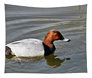 Male Pochard Duck Tapestry