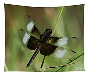 Male Widow Skimmer Dragonfly Tapestry