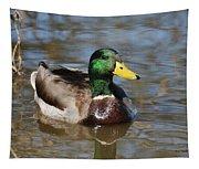 Mallard Duck Watches Tapestry