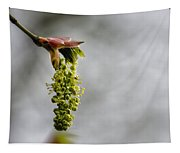 Maple Blossom - No. 2 Tapestry