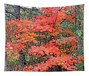 Maple Rush In The Fall Tapestry