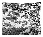 Maple Sunset - Paint Bw Tapestry