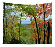 Maples Against Lake Superior - Tettegouche State Park Tapestry