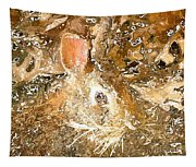 March 025 0 Rabbit Eyes Looking Tapestry