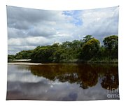 Marimbus River Brazil Reflections 4 Tapestry