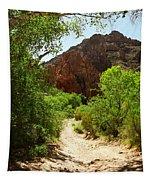 Martinez Canyon Tapestry