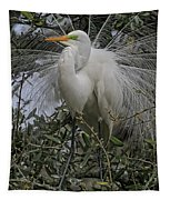 Mating Plumage Tapestry