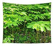 Mayapple Plants Tapestry