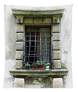 Medieval Window With Iron Grilles Tapestry