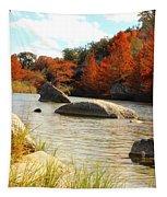Fall Cypress At Bandera Falls On The Medina River Tapestry