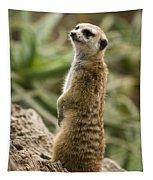 Meerkat Mongoose Portrait Tapestry