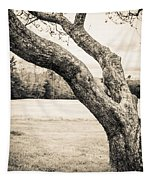 Meet Me Under The Old Apple Tree Tapestry