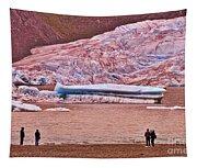 Mendenhall Glacier Juneau 2 Tapestry