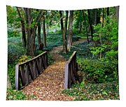 Metroparks Pathway Tapestry