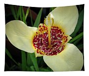 Mexican Shell Flower Tapestry