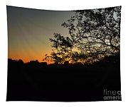 Michigan Sunrise 01 Tapestry