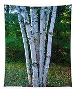 Micro-grove Tapestry