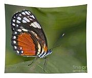 Micro Wings... Tapestry
