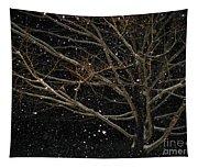 Midnight Snow Tapestry