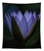 Midnight Water Lily Tapestry