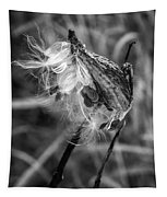 Milkweed Pod Monochrome Tapestry