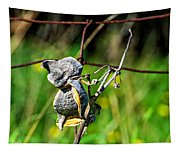 Milkweed Retirement  Tapestry