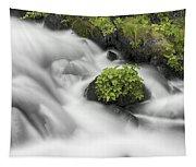 Milky Stream Tapestry