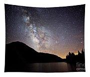 Milky Way At Highland Lakes Tapestry
