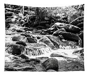 Mini Cascades Smoky Mountains Bw Tapestry