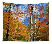Minnesota Autumn Foliage Tapestry