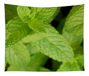 Mint Tapestry