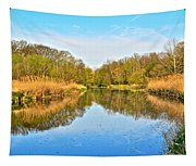 Mirror Canal Tapestry