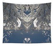 Mirror Of Snow  Tapestry