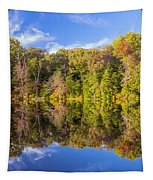 Mirror Reflections Of Fall Tapestry