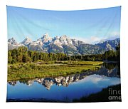 Mirrored Beauty Tapestry