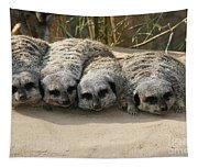 Mischievous Meerkats Tapestry