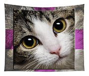 Miss Tilly The Gift 1 Tapestry