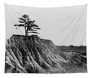 Mississippi Erosion, 1936 Tapestry