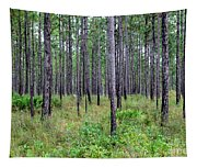 Mississippi Woods Tapestry