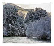 Mist And Snow On Trees Tapestry
