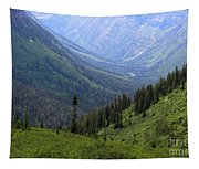 Mist In The Valley Tapestry