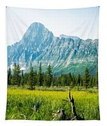 Mistaya River Valley And Mountain Range Tapestry
