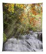 Misty Falls At Coker Creek Tapestry