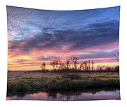 Mitchell Park Sunset Panorama Tapestry