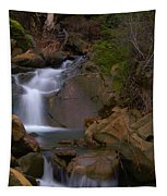 Mix Canyon Creek Tapestry