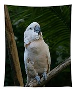 Moluccan Cockatoo Tapestry